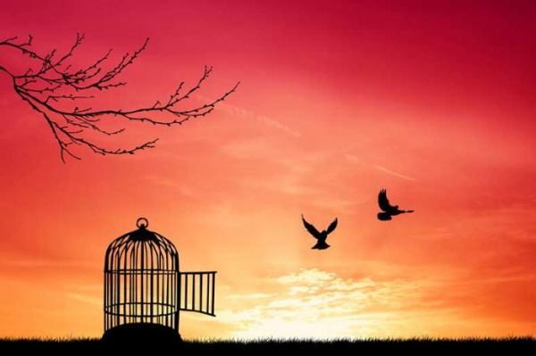 Um Deus apaixonado pela liberdade